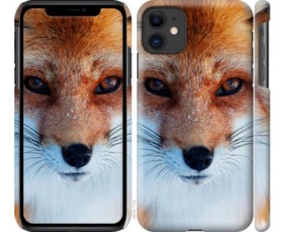 Чехол Рыжая лисица для iPhone 11