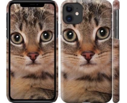 Чехол Полосатый котик для iPhone 11