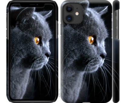 Чехол Красивый кот для iPhone 11