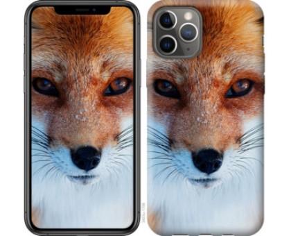 Чехол Рыжая лисица для iPhone 11 Pro