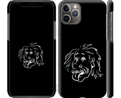 Чехол Эйнштейн для iPhone 11 Pro