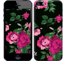 Чехол Розы на черном фоне для iPhone 5/5S/SE