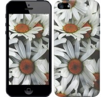 Чехол Ромашки v2 для iPhone 5/5S/SE