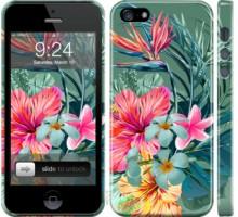 Чехол Тропические цветы v1 для iPhone 5/5S/SE