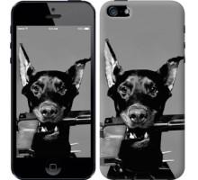 Чехол Доберман для iPhone 5/5S/SE