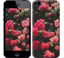 Чехол Куст с розами для iPhone 5/5S/SE