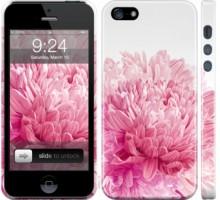 Чехол Хризантема для iPhone 5/5S/SE