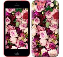 Чехол Розы и пионы для iPhone 5c