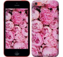 Чехол Пионы v3 для iPhone 5c