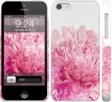 Чехол Хризантема для iPhone 5c