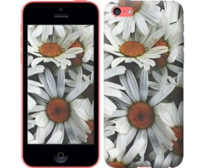 Чехол Ромашки v2 для iPhone 5c