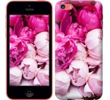 Чехол Розовые пионы для iPhone 5c