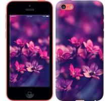Чехол Пурпурные цветы для iPhone 5c