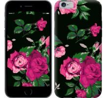 Чехол Розы на черном фоне для iPhone 6/6s (4.7'')