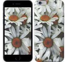 Чехол Ромашки v2 для iPhone 6/6s (4.7'')