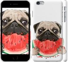 Чехол Мопс и арбуз для iPhone 6 plus/6s plus (5.5'')