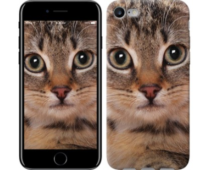 Чехол Полосатый котик для iPhone 8 (4.7)