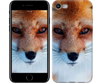 Чехол Рыжая лисица для iPhone 8 (4.7)