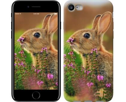 Чехол Кролик и цветы для iPhone 8 (4.7)