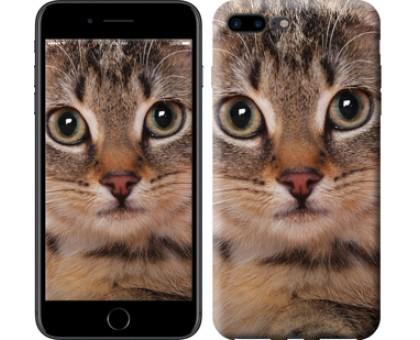 Чехол Полосатый котик для iPhone 8 Plus