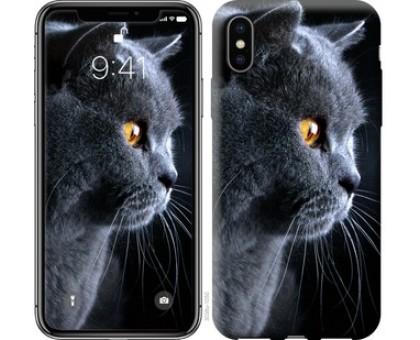 Чехол Красивый кот для iPhone X (5.8)