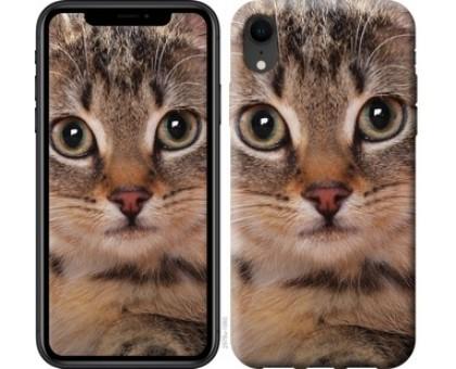 Чехол Полосатый котик для iPhone XR