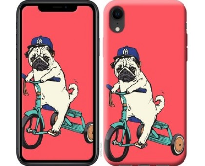 Чехол Мопс на велосипеде для iPhone XR