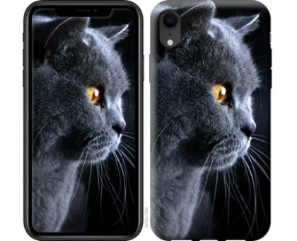 Чехол Красивый кот для iPhone XR