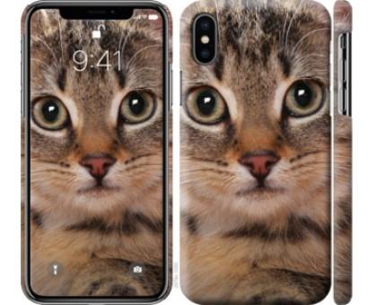 Чехол Полосатый котик для iPhone XS (5.8)