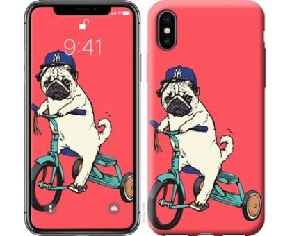 Чехол Мопс на велосипеде для iPhone XS (5.8)