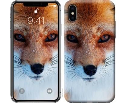 Чехол Рыжая лисица для iPhone XS (5.8)