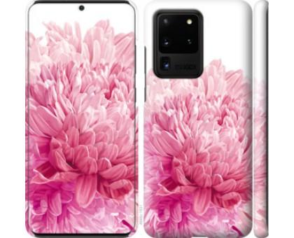 Чехол Хризантема для Samsung Galaxy S20 Ultra